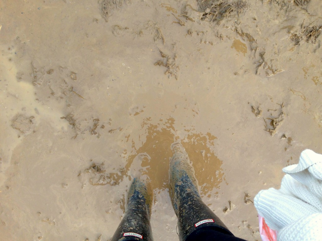 Slipping and sliding in the mud at Glastonbury